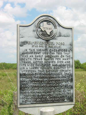 Encino, Texas Historical Marker (click to enlarge)